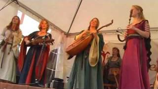 Die Irrlichter live 2010 - der kleine Geigling