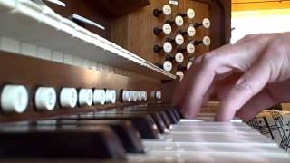 """Prelude and Fugue in e Minor BWV 533 - JS Bach """"The Cathedral"""""""