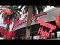 Flamingo Hotel & Casino - Las Vegas: Walkin' Thru - YouTube
