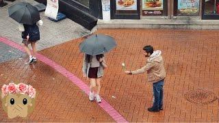 تجربة اجتماعية في كوريا - شوفوا ردة فعل البنات لما عطيناهم ورد!