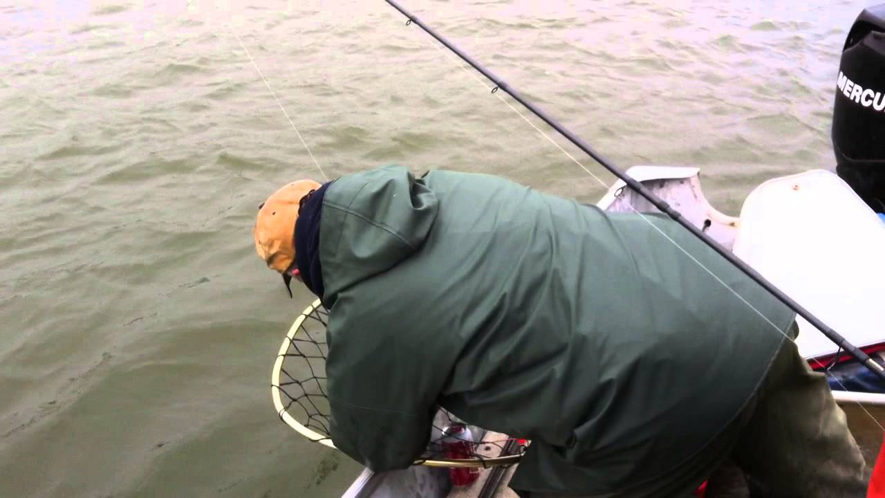 Thomas on the nush fishing trip in alaska youtube for Alaska out of state fishing license