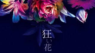 SIRO「狂い花」 Lyric Video(映画「白爪草」主題歌)