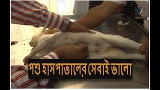 মানুষের চেয়ে পশু হাসপাতালই ভালো! Veterinary hospital Dhaka