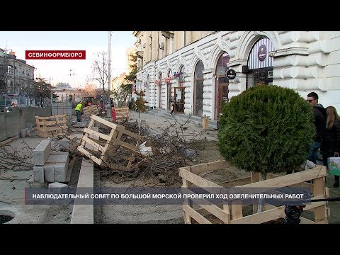 НТС Севастополь: На Большой Морской уже высаживают новые деревья