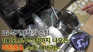 LG DIOS 식기세척기 스팀 DFB22S 식기세척기 5년차 사용자가 써본 느낌은?