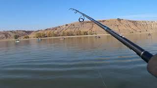 Ловля судака Спиннинг Джиг Река Дон Цимлянское водохранилище