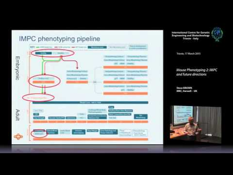 S. Brown - Mouse Phenotyping 2_ IMPC and future directions