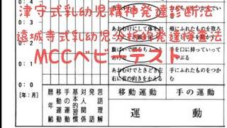 乳幼児 円城寺 分析 的 発達 検査 式