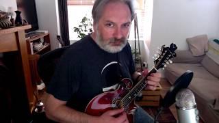 Lady Anne Montgomery (reel) on mandolin