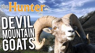 the Hunter - The Mountain Is Out To Kill Me ! - Alpine Ibex Hunting