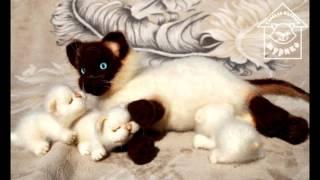Кошки как живые. Вязаные игрушки Натальи Мурико