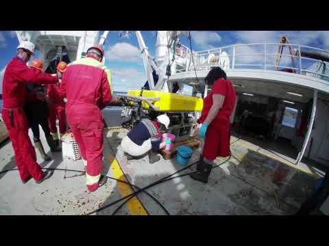 Koralltokt med Havforskningsinstituttet