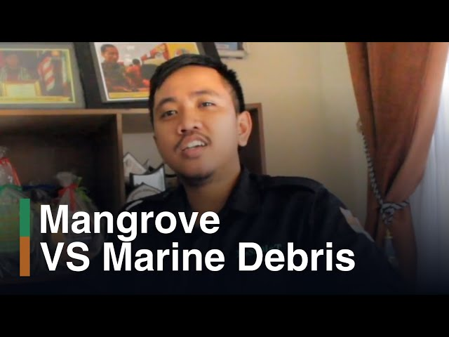 Press Release Mangrove REpLaNT 2018: Coastal Crisis: Mangrove vs Marine Debris