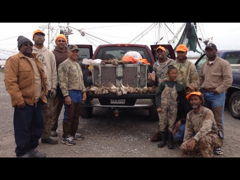 Benson's Kennel Louisiana Rabbit Hunting With Beagles