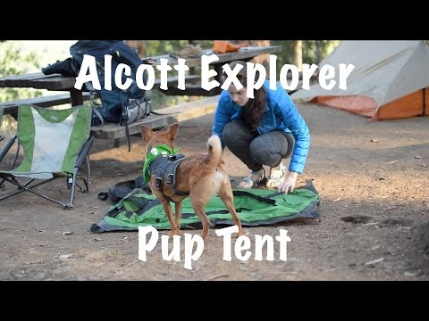 Alcott Explorer Pup Tent setup in 20 seconds