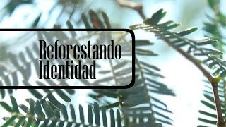 REFORESTANDO IDENTIDAD - Documental 26 minutos