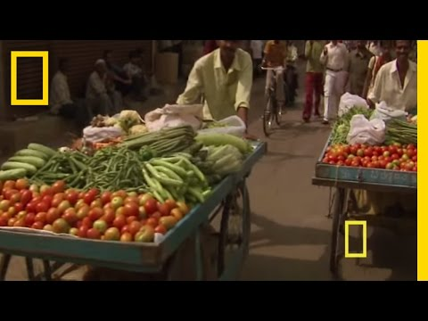 Diwali - Festival of Lights | National Geographic