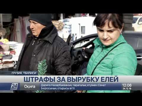 Выпуск новостей 12:00 от 24.12.2019