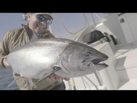 Lake Ontario Salmon Fishing - June 2019