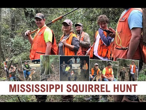 Mississippi Squirrel Hunt | Part I | Benson's Kennel