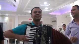 Dalibor Stoiljkovic i Casper bend iz Vlasotinca svadba u leskovcu