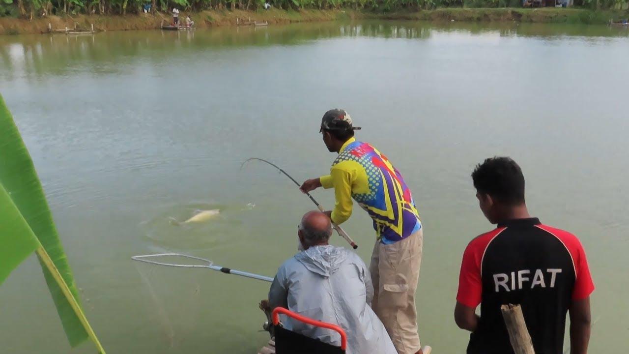 Big Carp fishing bait and live fish hunting by Kanon