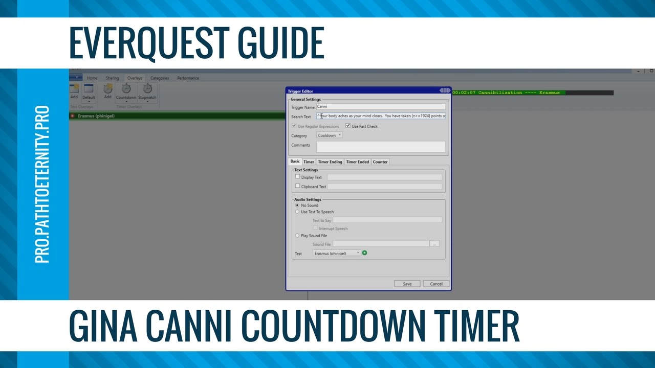 EverQuest Guide: GINA Canni Countdown Timer