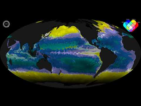 Ecological Provinces from a computer simulation of the marine global ecosystems.