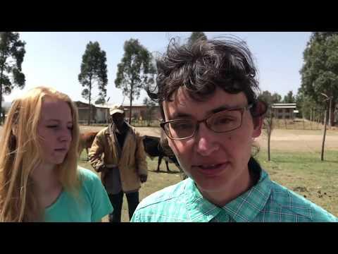 Vet Clinics Ethiopia