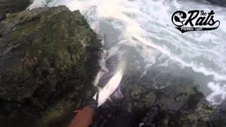 The Rats Team - Pesca de Corvinas Norte de Chile