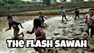 Download Video THE FLASH || Lomba Cari Keong Mas dan Balapan Lari Di Sawah MP3 3GP MP4