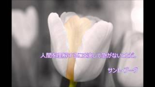 経営のプロたちの金言【サント・ブーヴ】~本澤拓眞・経営塾(大阪市)