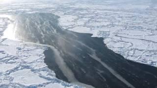 Langmuir Circulation in a Sea Ice Lead