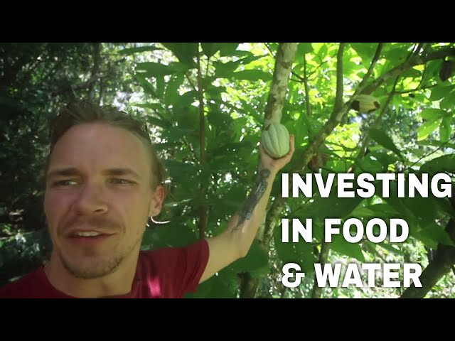 Investing In Food, Water & Crypto~ Building a Greenhouse in Costa Rica-