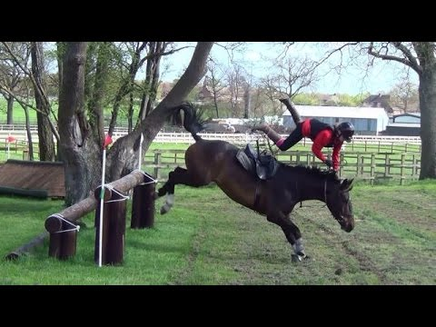 Download all new BAD horse falls,bucks and rears. **MUST SEE**