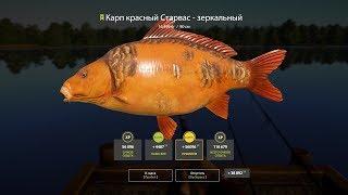 РР 4 Озеро Янтарное точка и цена улова
