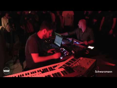 Electronic: Schwarzmann Boiler Room Berlin Muting the Noise Live Set