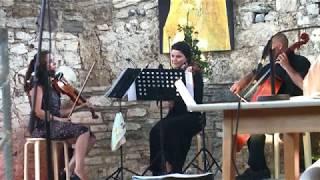Seitenstechen   1.  Alpen-Adria-Literaturfestival Arnoldstein 1080p