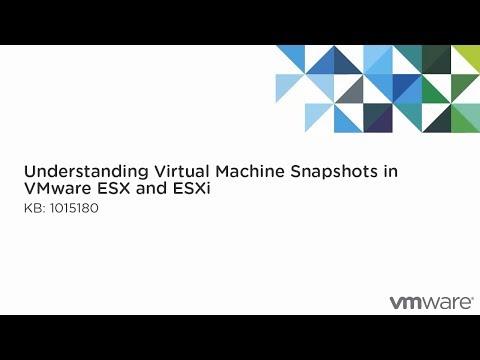 Understanding VM snapshots in ESXi / ESX (1015180)
