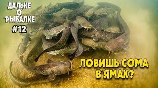 Правильно ли ловить сома в ямах Виталий Дальке о рыбалке на сома нр 12
