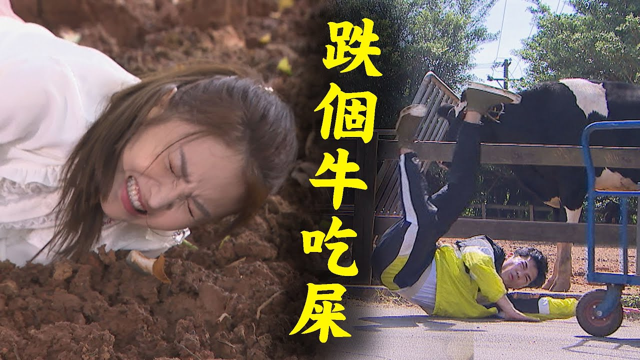 【天之驕女】EP01 天佑不成材遭疑是摸屁色狼! 子婷談合作跌進牛糞堆裡