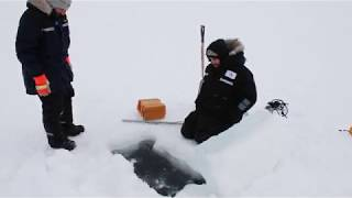 Measuring Lake Ice Thickness From Space (Byte-Sized Science)