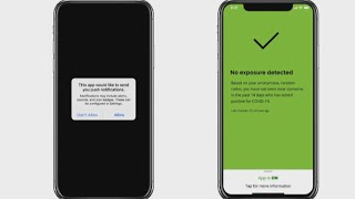 A cellphone app that will alert users if they've come into contact with someone who has tested positive for covid-19 soon be available. ontario rol...
