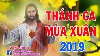 Thánh Ca Mùa Xuân - Chúc Mừng Năm Mới | Tuyển Chọn Nhạc Mùa Xuân Hay Nhất -