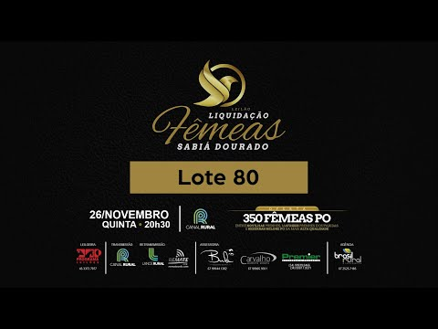 LOTE 80