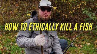 How To KILL A Fİsh - FASTEST & Most HUMANE WAY! (Bonus Gut & Fillet HOW TO)