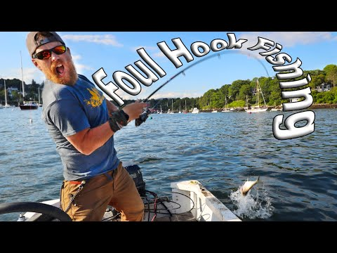 Foul Hook Fishing On Purpose ( I Bought A Boat Ep. 2)