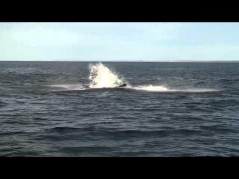 Diferencia de velocidad entre aire y agua