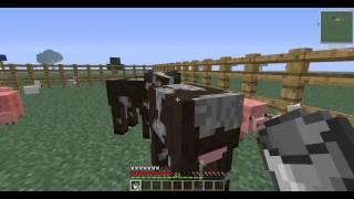 Como pegar leite da Vaca no Minecraft 1.4.5