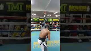 Devin Haney KO Stoppage while Sparring at Floyd Mayweather Gym